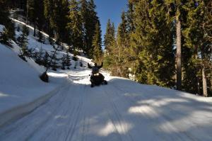 ski-doo-10032019-2