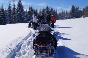 ski-doo-fb-45